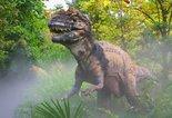 T-rex kaart
