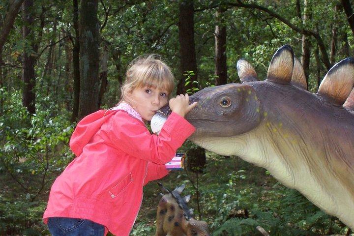 dinofan Susanne