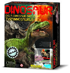 Dinoskelet T-REX uitgraven