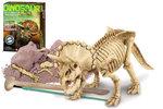 Dinoskelet Triceratops