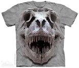 T-rex-Big-Skull-(grijs)