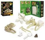 T-rex schedel geoworld