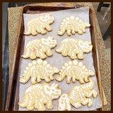Resultaat dino koekjes