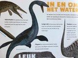 Boek: dinosaurussen (libre)_