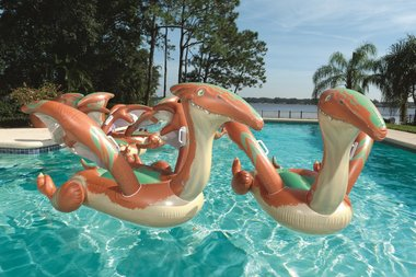 Zwemband Pteranodon (groot)