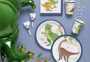 ..Happy Dinosaur Feestpakket (8 pers.)