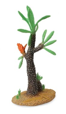 ..Boom: Williamsonia -13 cm bruin/groen