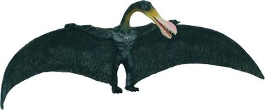 Ornithocheirus (collecta)