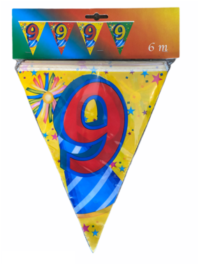 Vlaggenlijn 9 jaar  (6 meter)