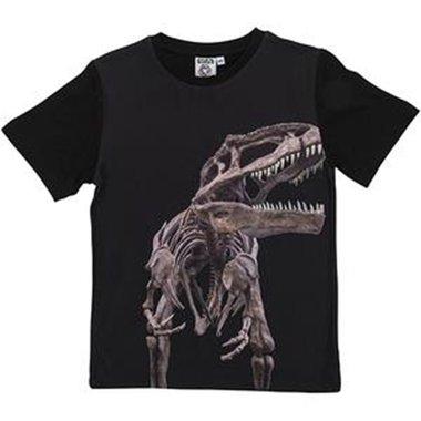 T-shirt - T-rex skelet (verschillende maten)