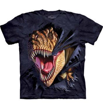 (maat 116) Laatste: T-shirt T-rex Tearing