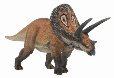 Torosaurus (collecta)