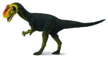 Proceratosaurus (collecta)