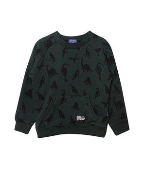 Dinosaurus sweater (groen) Claesen's