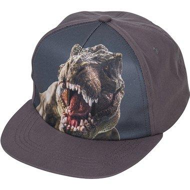 T-rex Pet