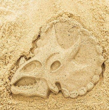 Dinosaurus zandvormen (verschillende vormen)