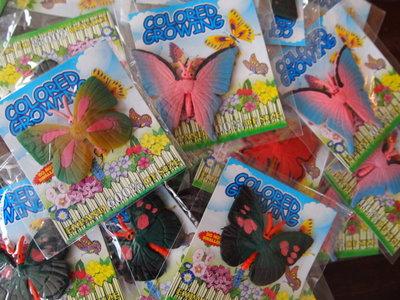 Groeiende vlinders in een zakje