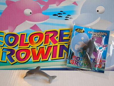 Groeiende dolfijnen in een zakje