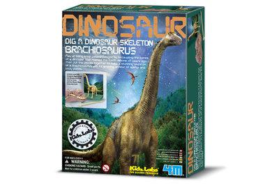Dinoskelet Brachiosaurus uitgraven