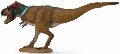 T-rex collecta