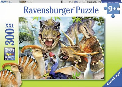 300 stuks puzzel