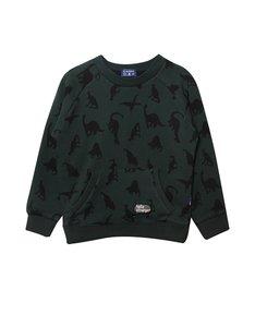 dinosaurus sweater
