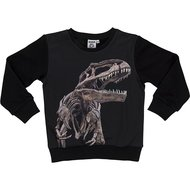 Dinosaurus sweater